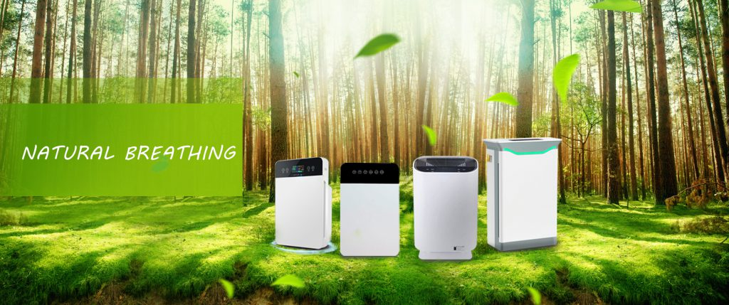 Pollution-free forest Forest with fresh air Purifying air Natural breathing