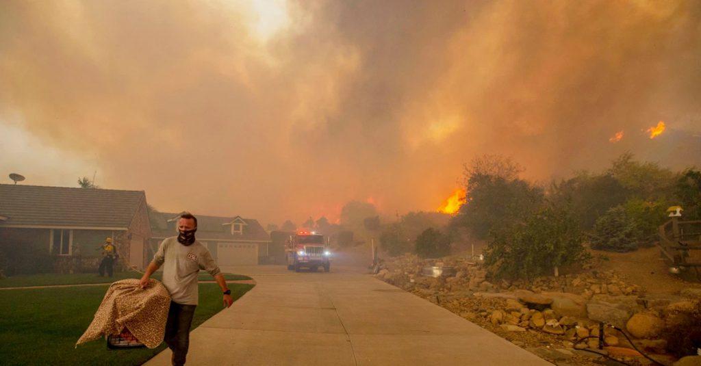 Wildfire Wildfire smoke Forest fire Fire escape Fire rescue