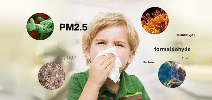 Viruses in the living environment, formaldehyde, PM2.5.5, Harmful substances in the air