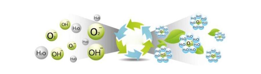 Negative ion, air vitamin,