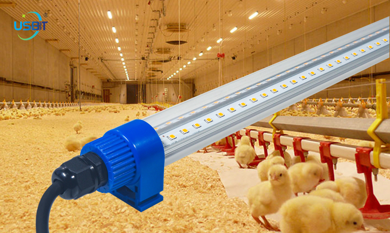 Poultry farming lights